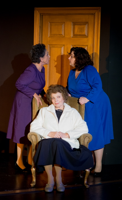 Phyllis Spear, Renee Rogoff and Clelia Patrizio are three generations of women trying to cope with btheir pasts and present in Door To Door / Photo by George Wentzler